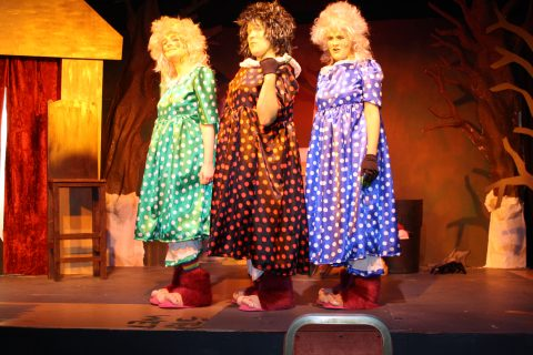 2008 Cinderella - The Trolls Story